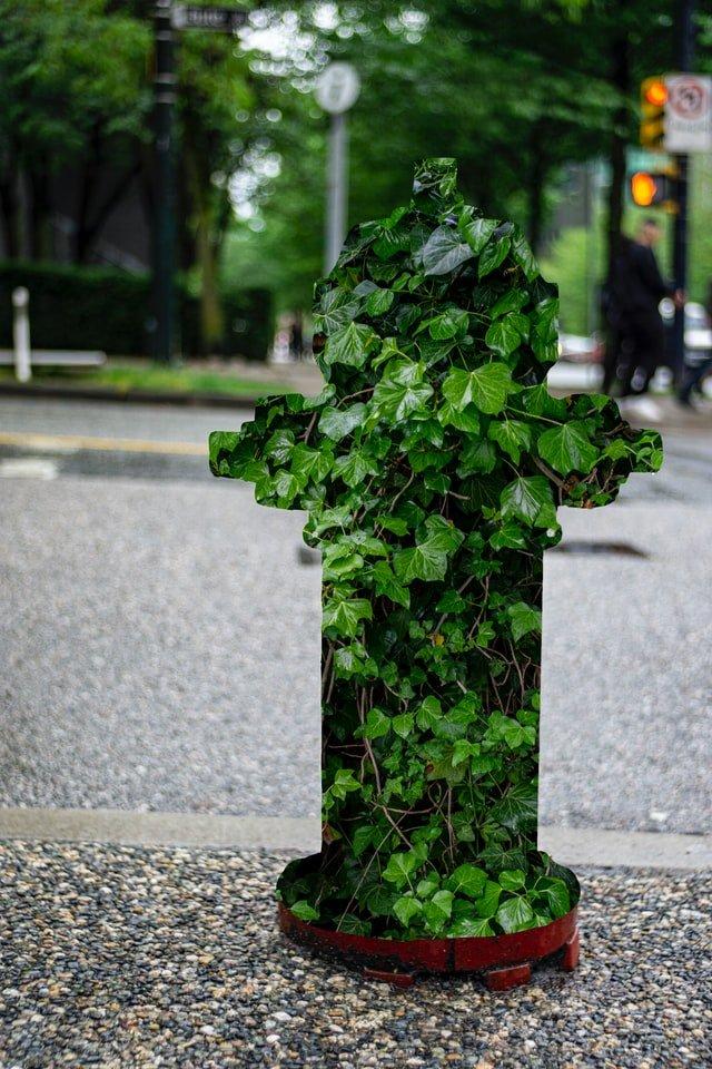 zakamuflowany hydrant